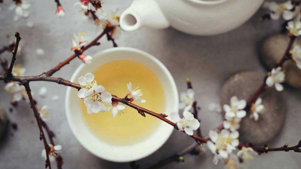 آنچه از چای سفید باید بدانید